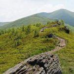 Bieszczadzka Tarnica zaprasza na szczyt